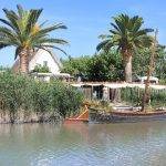 private tours Albufera
